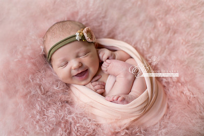 Newborn Photographer Jacksonville, Florida