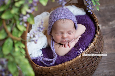 Newborn Baby Photographer in Jax