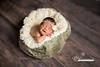 Newborn baby photographers in Jacksonville, fl, ponte vedra, st augustine