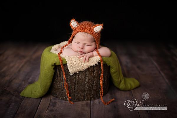 Jacksonville Florida Newborn Photographer