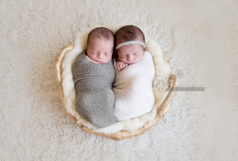 Twin Baby Photographer in Jacksonville