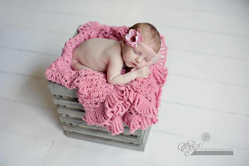 Jacksonville's newborn baby Infant child maternity photographer