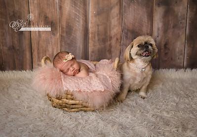 Newborn Photography in Jacksonville Florida