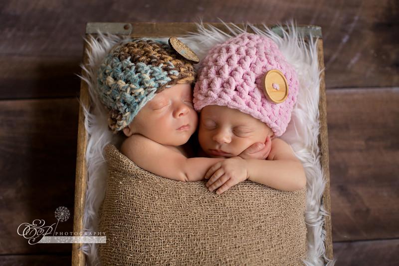 Jacksonville FL Newborn Twin Photographer