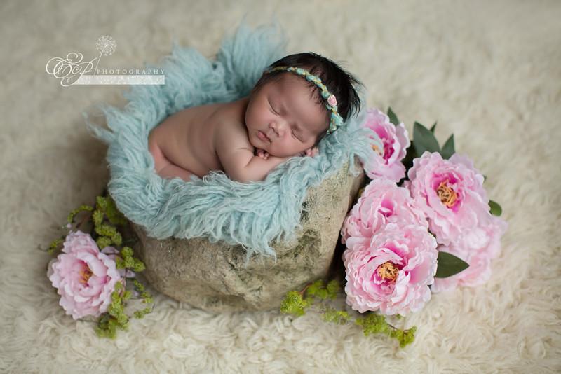 Newborn Photographer in Jacksonville, Florida