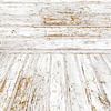 white to tan all in one floor and backdrop wood planks