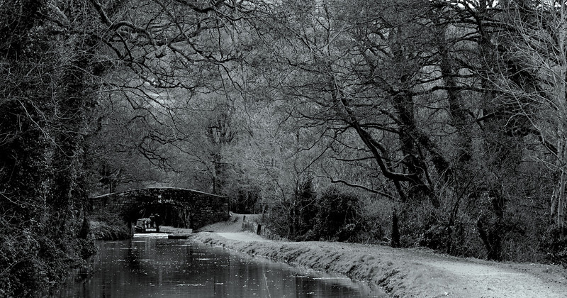 Monthly Competition No 1 (2010 - 2011)<br /> Commended<br /> Category: Prints (Primary)<br /> Swindon Photographic Society