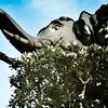 Untitled<br /> Erawan Museum<br /> Samut Prakan, Thailand | May, 2011