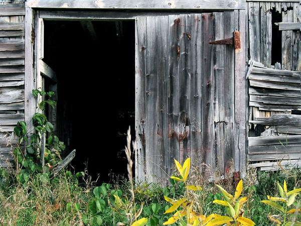 Vermont Barn Door II