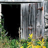 Vermont Barn Door II