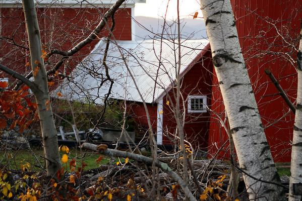 Birch and Barn<br /> Bolduc's Farm, Laconia, NH