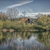 D Agostini Pond