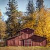 Greenwood Fall