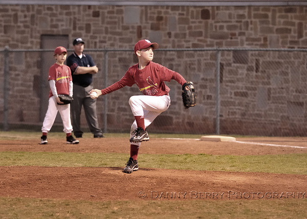 cardinals11_0159