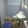 Cherry Bluff Basement Guest Bathroom