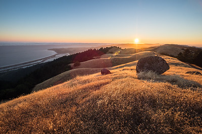 From Mt. Tam