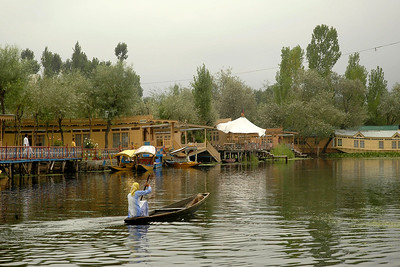 Lady rowing a boat in the Dal Lake, Srinagar, Kashmir, J&K, India.