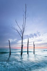 Secluded Beach on Longboat Key