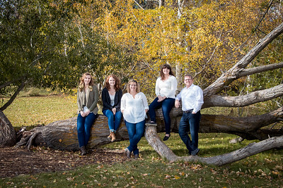 The fallen tree - family photos Red Deer Alberta