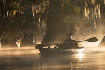Kayaking Louisiana Swamps