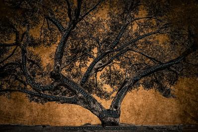 Believe Tree - Brown Paper