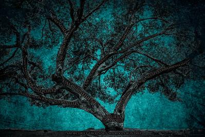 Believe Tree - Teal Paper