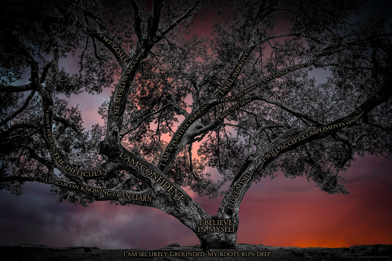 Believe Tree - Mission Trails Sunset