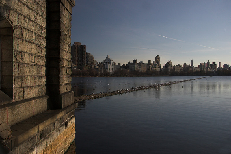 Central Park's wetlands