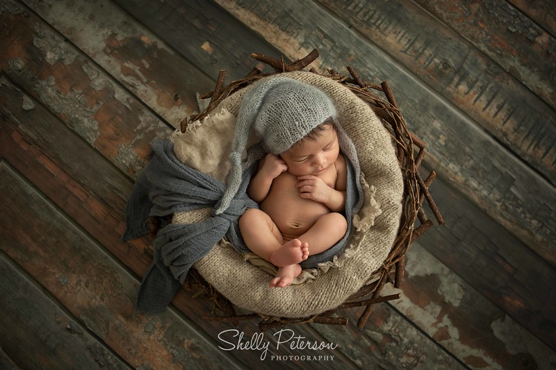 Nest on Grey Blue Distressed Wood - Blue and Grey Color Palette<br /> For babies up to 2 weeks of age