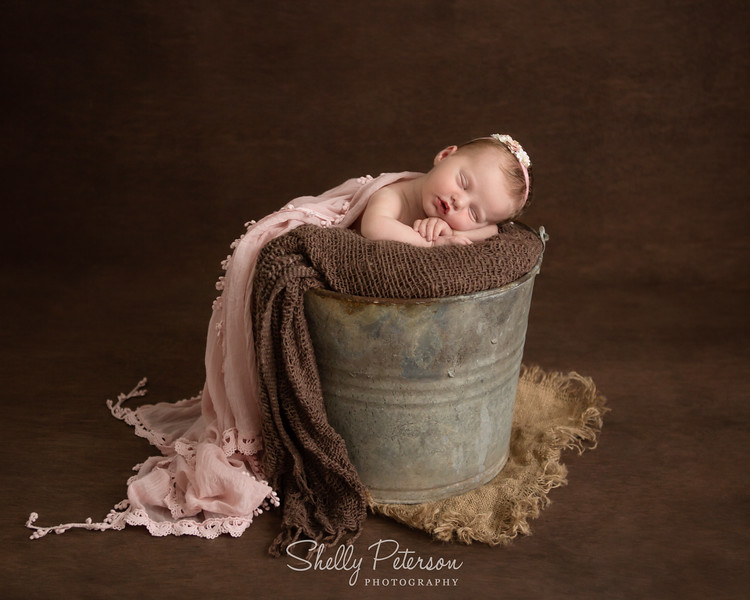 Milk Bucket on Plain Wood - Soft Pink and Neutral Color Palette