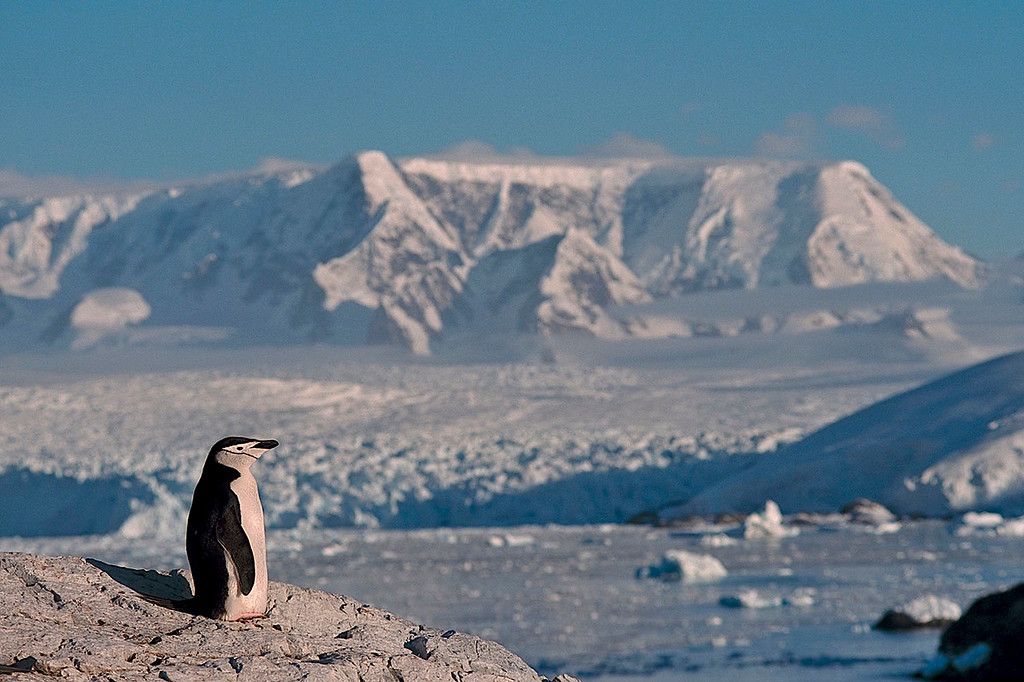 Antarctica. A place worth visiting!