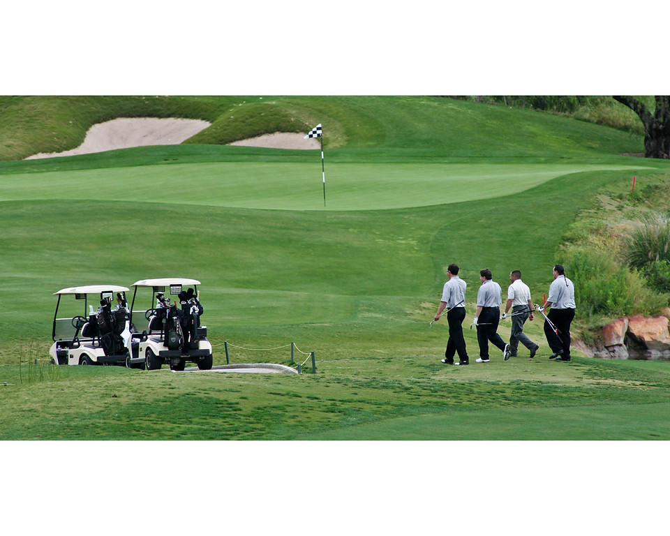 I love the symmetry of this image; the four golfers in unison, the perfectly aligned golf carts and the single flag.