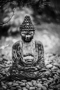 #2771 Buddha