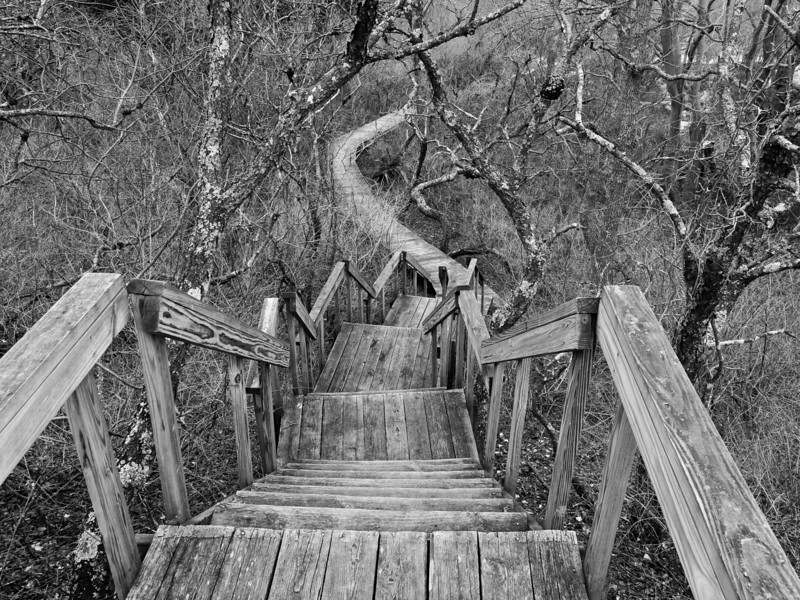 comes order.  Hellcat Dunes trail at the Parker River National Wildlife refuge.