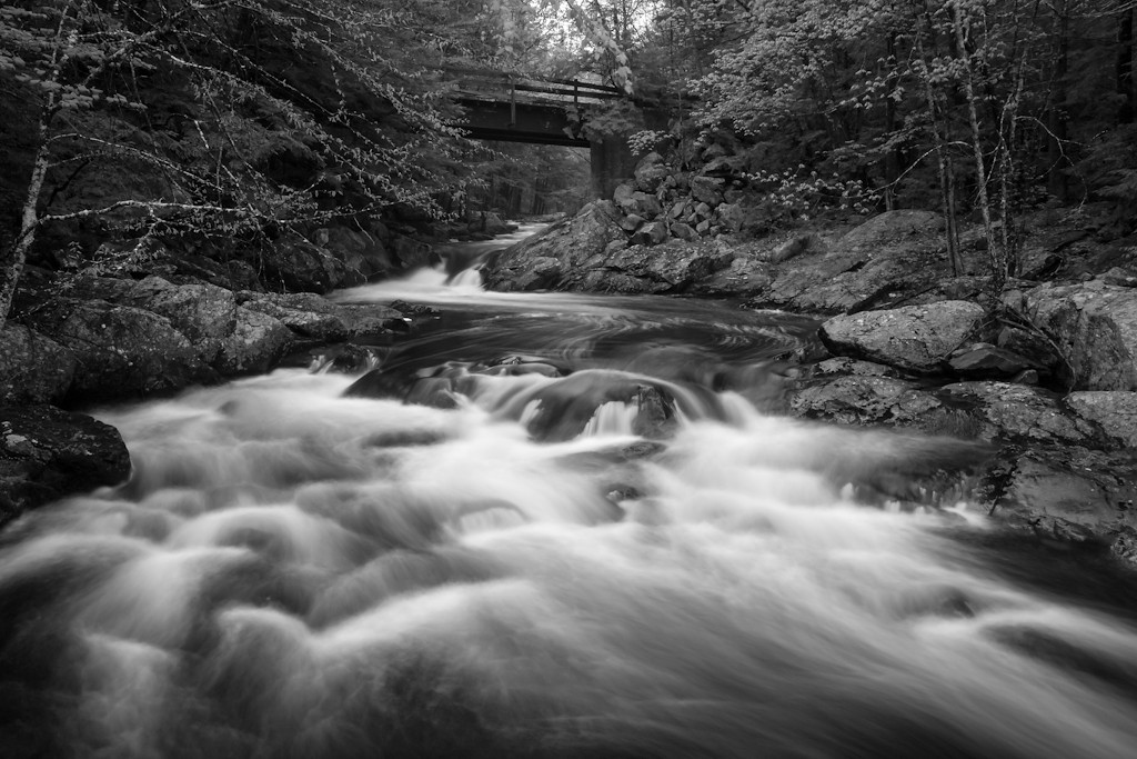 The south fork of the Piscataquog flowing mightily.  I clambered onto some very large rocks that mark the beginning of a large curve toward more falls.  Oh the smell!  Oh the roar!   I love this river.