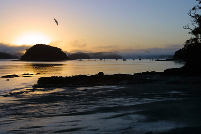 Sunrise over the Bay of Islands in New Zealand