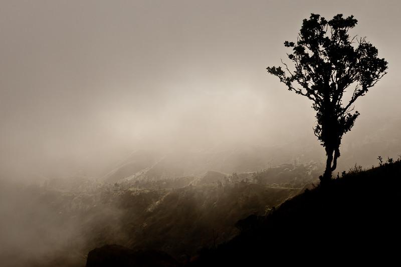 Mists of Nuka Hiva