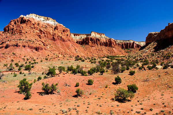 Desert Colors 1
