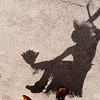 Native Dancer  - Shadow 2
