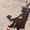 Native Dancer  - Shadow 2