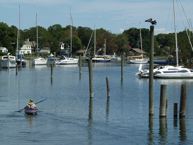 Kayak in Wickford Harbor, with cormorant drying its wings
