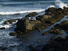 Rocky scene along the Cliff Walk, Newport RI