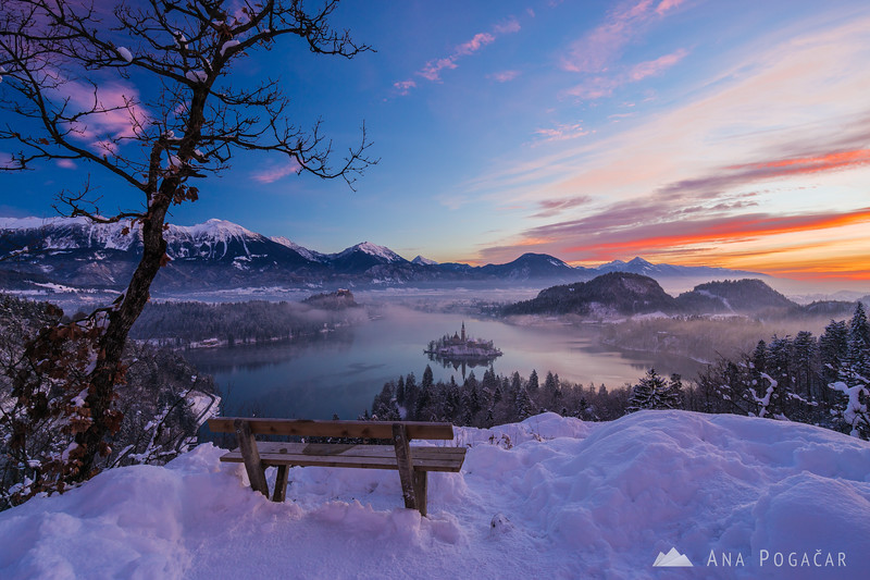 Glorious sunrise over snowy Lake Bled from Ojstrica hill