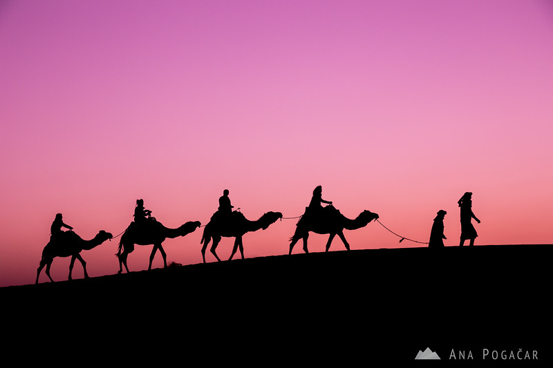 A caravan before sunrise - Erg Chebbi sand dunes of the Sahara