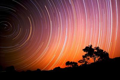 A 6-hour nighttime exposure of the southern sky at Bea Creek camp, just east of Tom Price, Western Australia.  Set the camera up, clicked the button, and went to bed. The shutter stayed open until the batteries gave out.  The color and capturing the south pole in the sky were beautiful surprises. If you look carefully, you can spot the Southern Cross just above the tree line.  With the lack of a significant pole star in the southern sky (Sigma Octantis is closest to the pole, but is too faint to be useful for the purpose), two of the stars of Crux (Alpha and Gamma, Acrux and Gacrux respectively) are commonly used to mark south. Following the line defined by the two stars for approximately 4.5 times the distance between them leads to a point close to the Southern Celestial Pole.