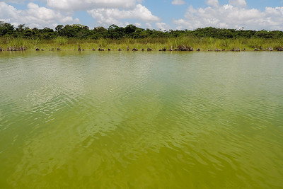 Orange Walk - Green Lagoon