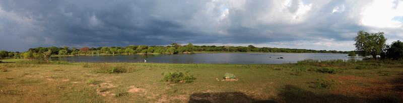 Yala - Wilapalawewa Panorama