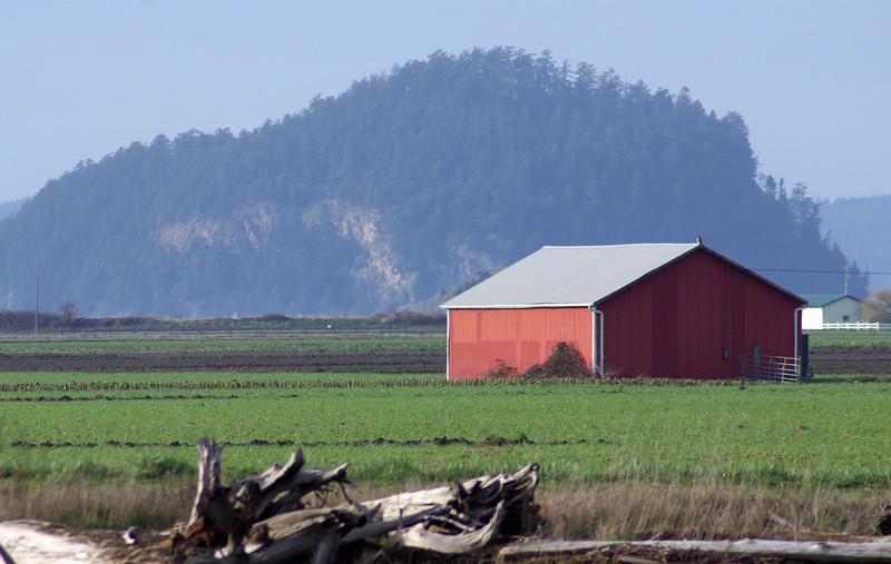 red barn. Skagit Valley, Washington.