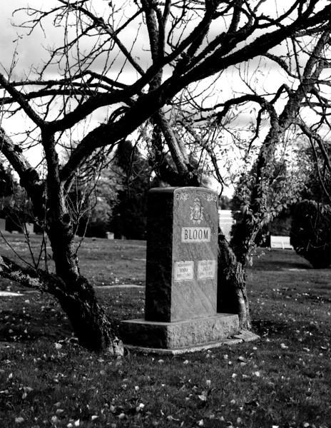 Old gravestone. Seattle, Washington