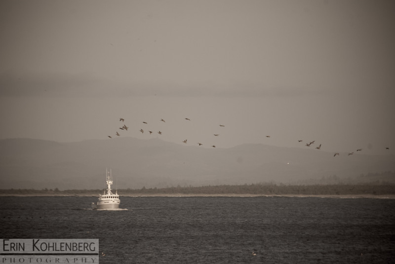 Fishing boat going out to sea. North Jetty by the Columbia River, Washington side.